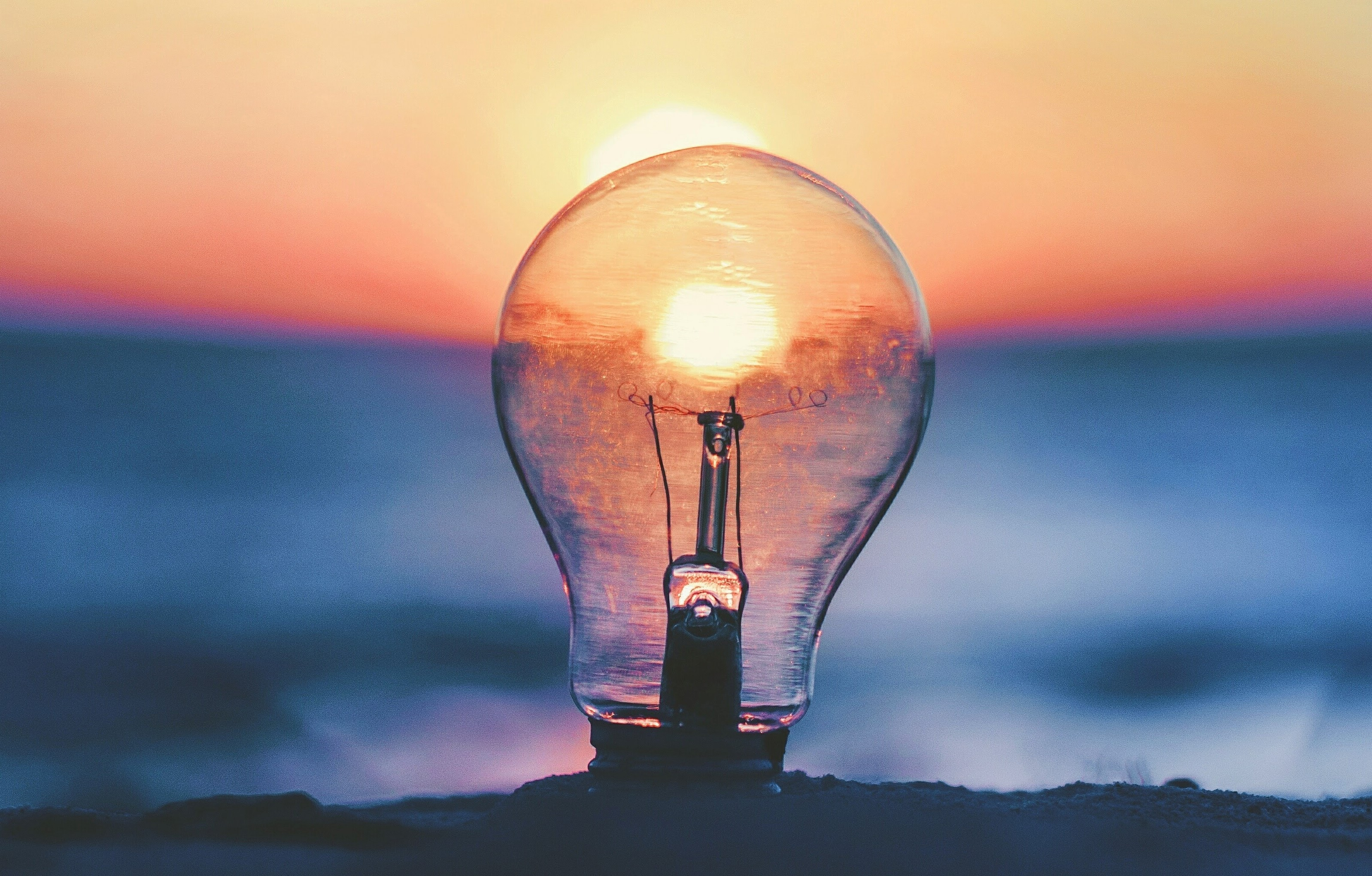 A lightbulb represents innovation and inventive thought