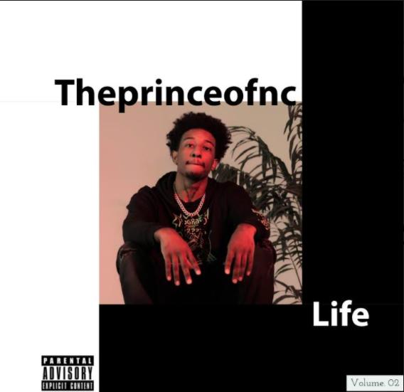 Theprinceofnc Album Review Life 2